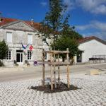 Traversée du bourg de St Preuil (16)