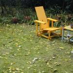 chaises jaunes feuilles