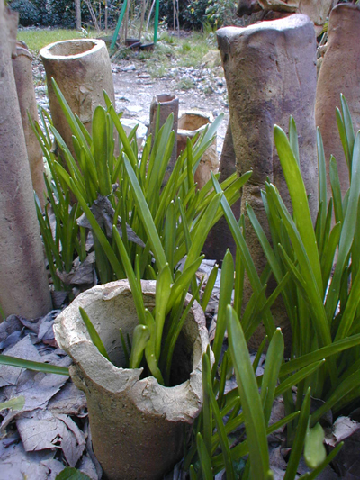 Jardin d artiste bordeaux atelier du sablier for Jardin fevrier